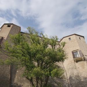 immagine da Castello Malatestiano di Santarcangelo
